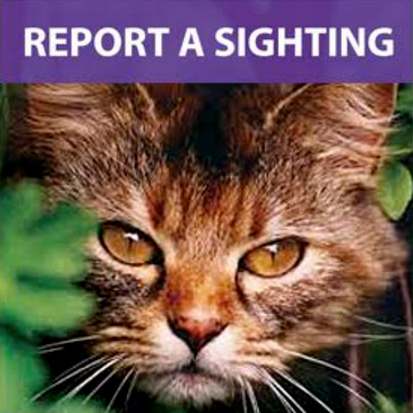 Report a sighting
