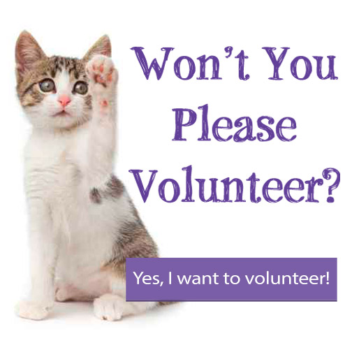 Won't you please volunteer?